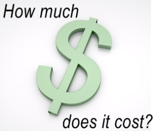 how_much_does_it_cost_nsi